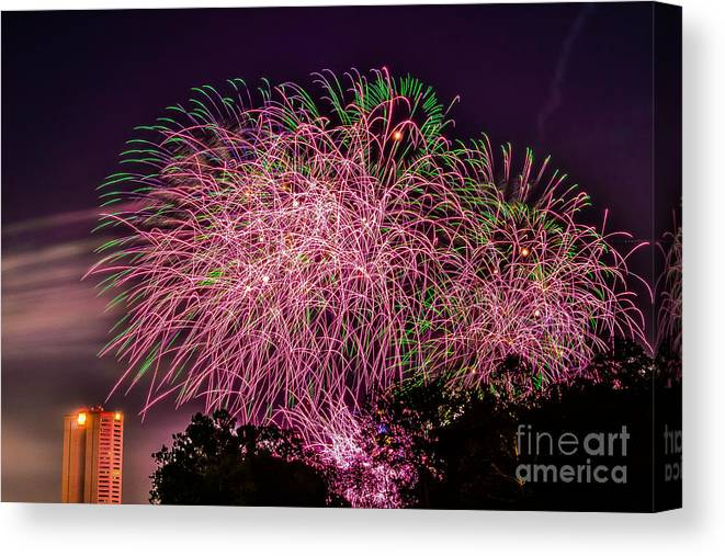 Fireworks Canvas Print featuring the photograph Pink by Christopher Biggers