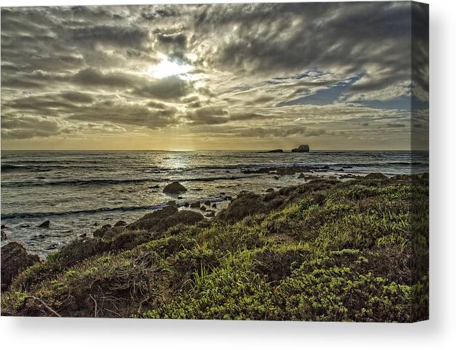 Beach Canvas Print featuring the photograph Point Piedras Blancas Sunset 1 by Jim Moss