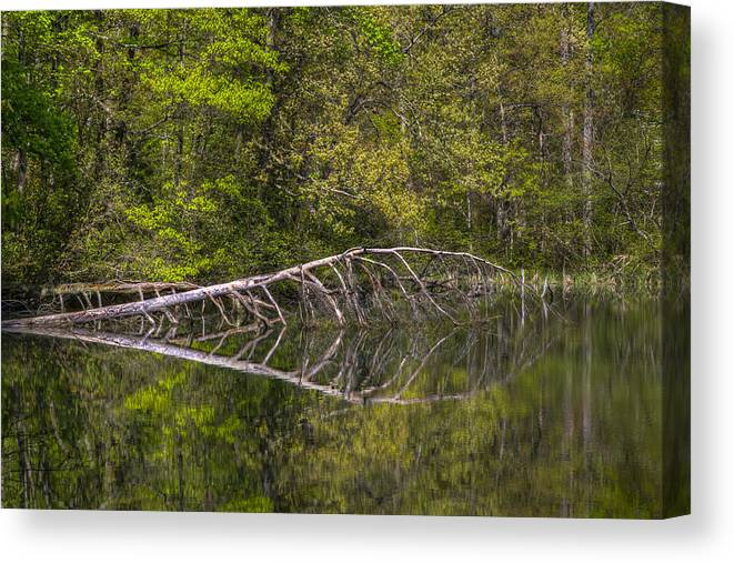 Appalachia Canvas Print featuring the photograph Quiet Waters by Debra and Dave Vanderlaan