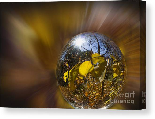 Radialblur Canvas Print featuring the photograph Radial Fall by Nicole Engstrom