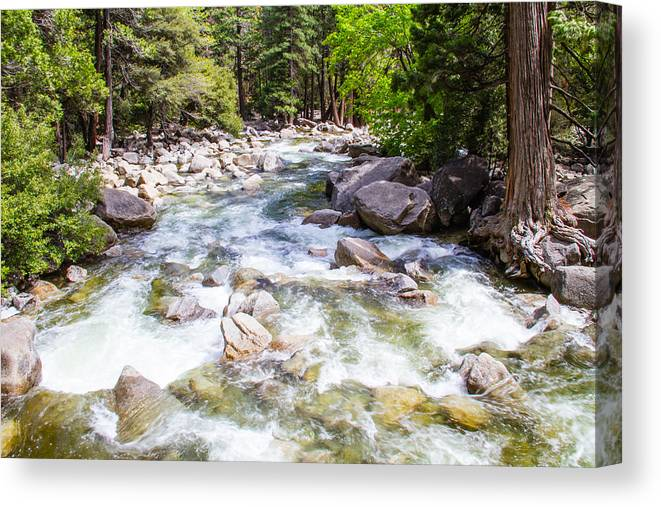 Yosemite Canvas Print featuring the photograph Rageing River Below Falls by Brian Williamson