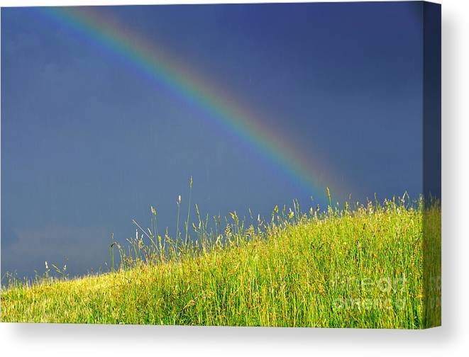 Rainbow Canvas Print featuring the photograph Rainbow Over Pasture Field by Thomas R Fletcher
