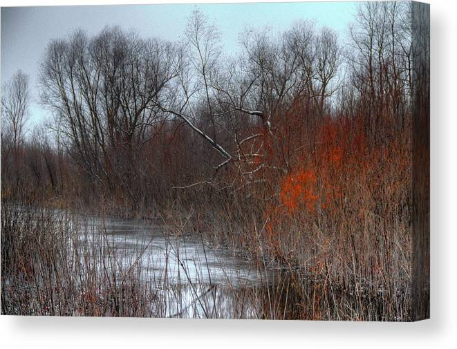 Swamp Canvas Print featuring the photograph Red by Mark Pearson