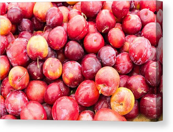 Food Canvas Print featuring the photograph Red Ripe Plums by John Trax