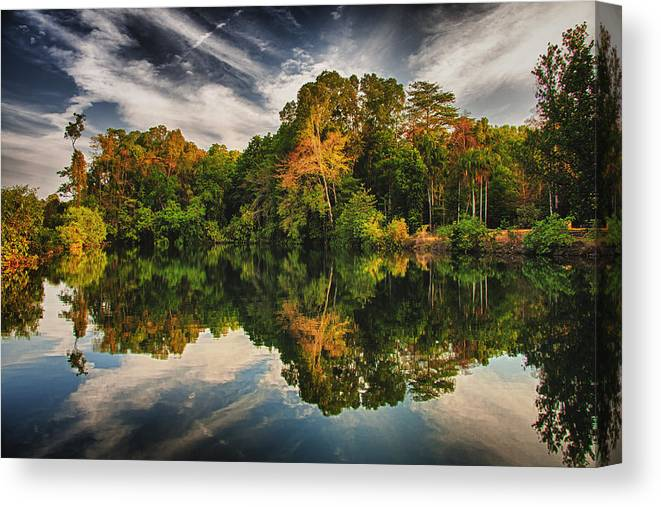 Tree Canvas Print featuring the photograph Reflections by Zoe Ferrie