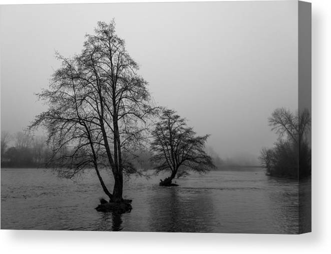 River Canvas Print featuring the photograph River Trees And Fog by John Daly