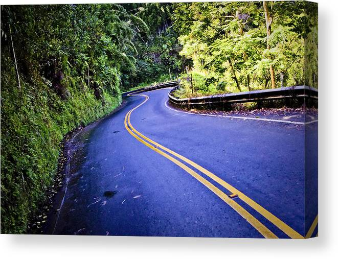 3scape Canvas Print featuring the photograph Road To Hana by Adam Romanowicz