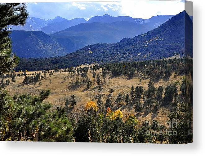 Nature Canvas Print featuring the photograph Rocky Mountain Evening by Nava Thompson