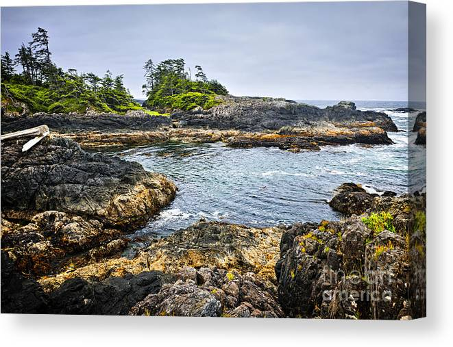 Pacific Canvas Print featuring the photograph Rugged Coast Of Pacific Ocean On Vancouver Island by Elena Elisseeva