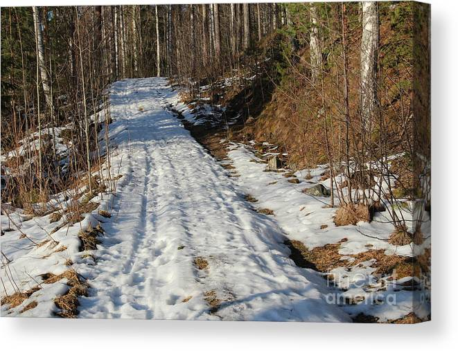 Cold Canvas Print featuring the photograph Rural Road In Eary Spring. by Kerstin Ivarsson