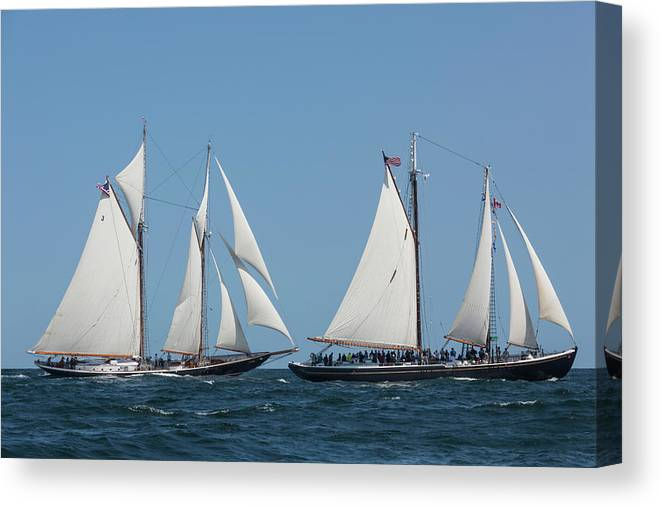 Photography Canvas Print featuring the photograph Sailing Ship In The Ocean At Gloucester by Panoramic Images