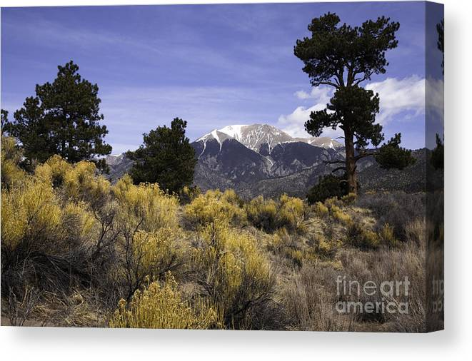 Mountains Canvas Print featuring the photograph Sangre De Chisto Mtns by Phil McCollum