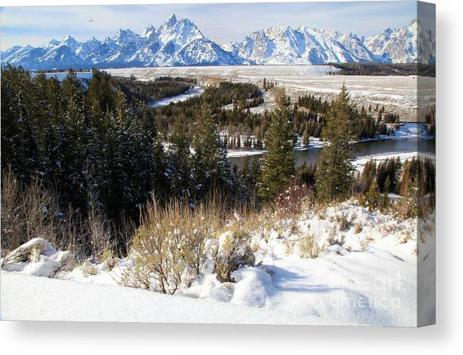 Grand Teton National Park Canvas Print featuring the photograph Snake River Overlook by Adam Jewell