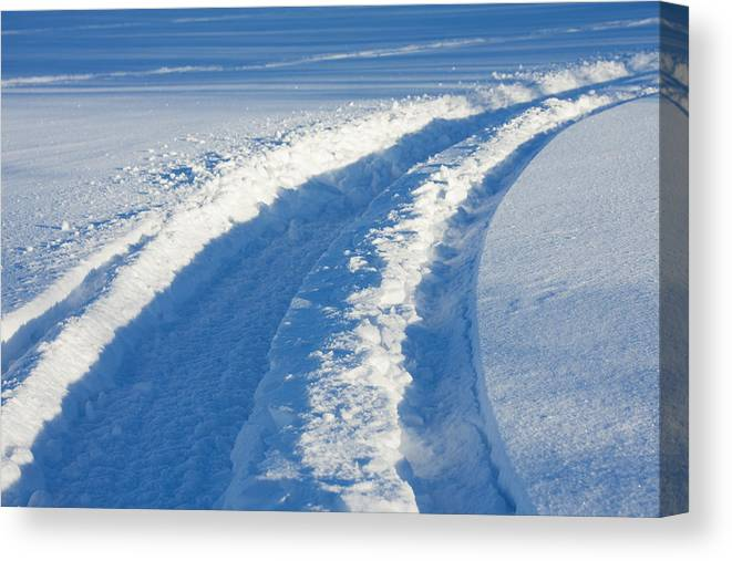 Snowmobile Tracks In Fresh Snow Canvas Print