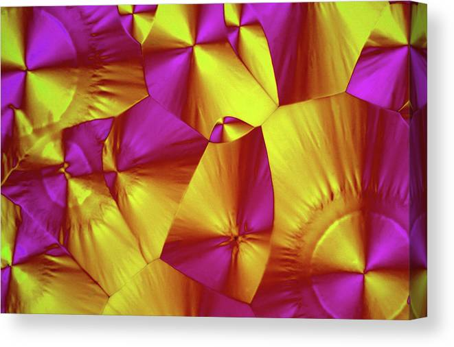 Light Micrograph Canvas Print featuring the photograph Sorbitol Crystals by John Durham