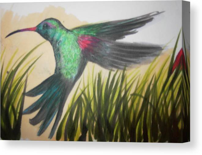 Humming Bird Canvas Print featuring the drawing Stand Still by Heather Hilliard
