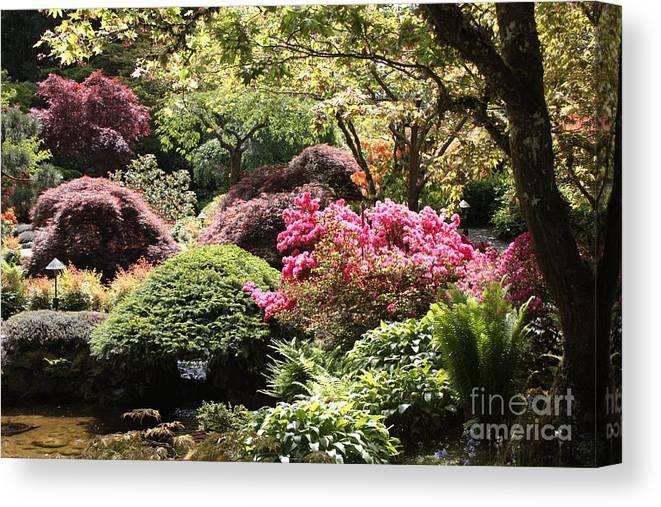 Japanese Garden Canvas Print featuring the photograph Sunny Japanese Garden by Carol Groenen