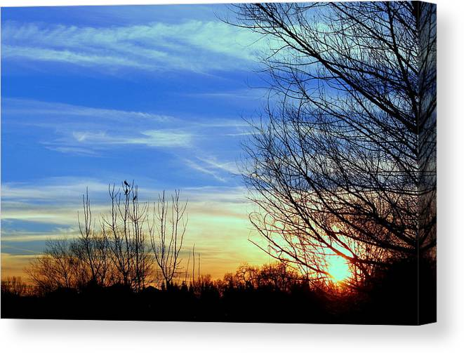 Sunset Canvas Print featuring the photograph Sunset And 3 Birds by Rima Biswas