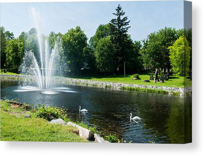 Swans Canvas Print featuring the photograph Swans With A Fountain by Nicole Couture-Lord