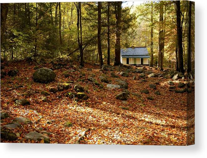The Alfred Reagan Cabin Canvas Print featuring the photograph The Alfred Reagan Cabin Autumn by John Saunders