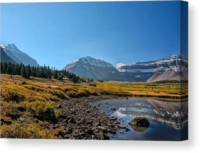 Pond Canvas Print featuring the photograph The Edge Of The Pond by Mitch Johanson