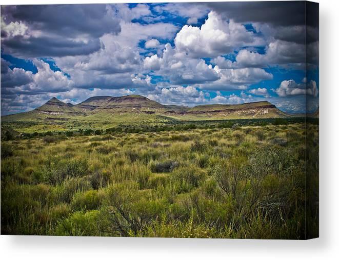 Landscape Canvas Print featuring the photograph The Green Desert by Jim Mattern