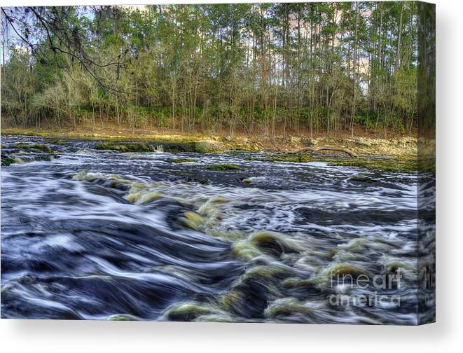 River Canvas Print featuring the photograph The Survivor by Mark Nelson