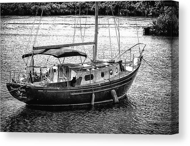 Black And White Canvas Print featuring the photograph Tied Close by Barry Jones