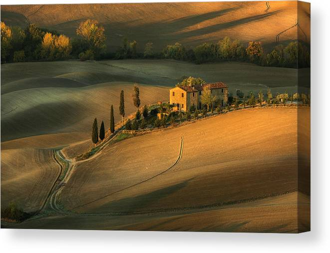 Landscape Canvas Print featuring the photograph Toscany by Clas Gustafson Efiap