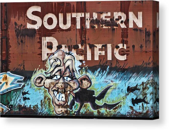 Graffiti Canvas Print featuring the photograph Train Art Swimming With Sharks by Carol Leigh