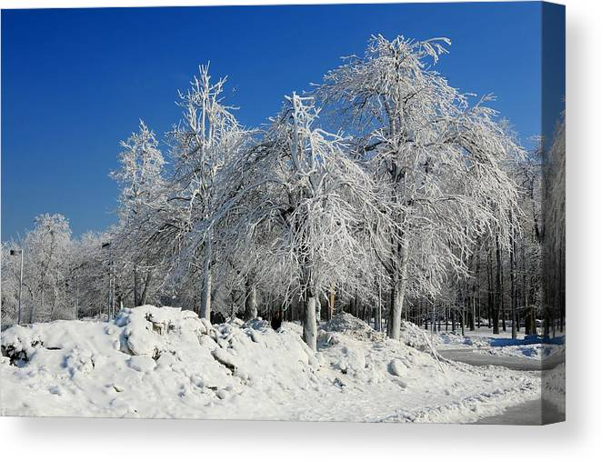 Niagara Falls Canvas Print featuring the photograph Tree Ice by Eric Swan