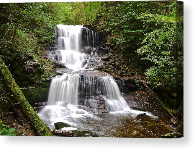 Waterfall Canvas Print featuring the photograph Tuscarora Falls by Frozen in Time Fine Art Photography