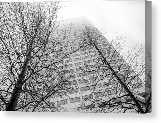 Tree Canvas Print featuring the photograph Urban V Nature by Ross Muggivan