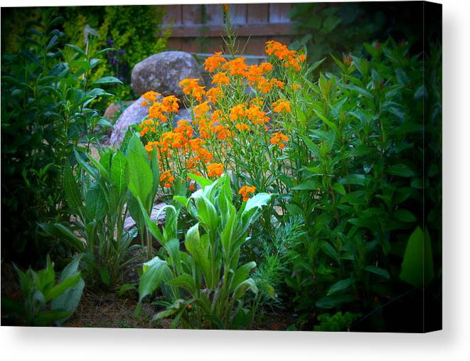 Garden Canvas Print featuring the photograph Wildflowers by Kay Novy