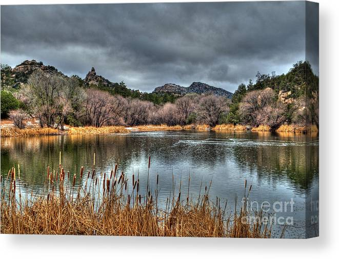Diana Graves Photography Canvas Print featuring the photograph Winter Cattails By The Lake by K D Graves