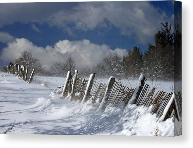 Snow Canvas Print featuring the photograph Winter by Lepercq Veronique