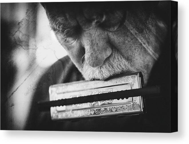 Harmonica Canvas Print featuring the photograph Wolf With Harmonica by Roswitha Schleicher-schwarz