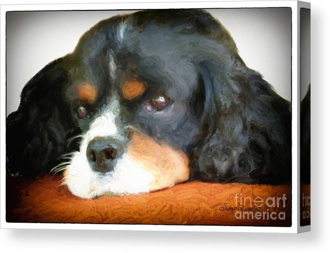 Animal Canvas Print featuring the digital art Cavalier King Charles Spaniel by Susan Lipschutz