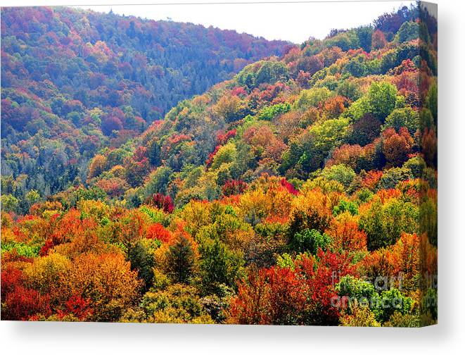 Fall Canvas Print featuring the photograph View Along The Highland Scenic Highway by Thomas R Fletcher