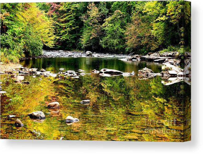 Williams River Canvas Print featuring the photograph Williams River Autumn by Thomas R Fletcher