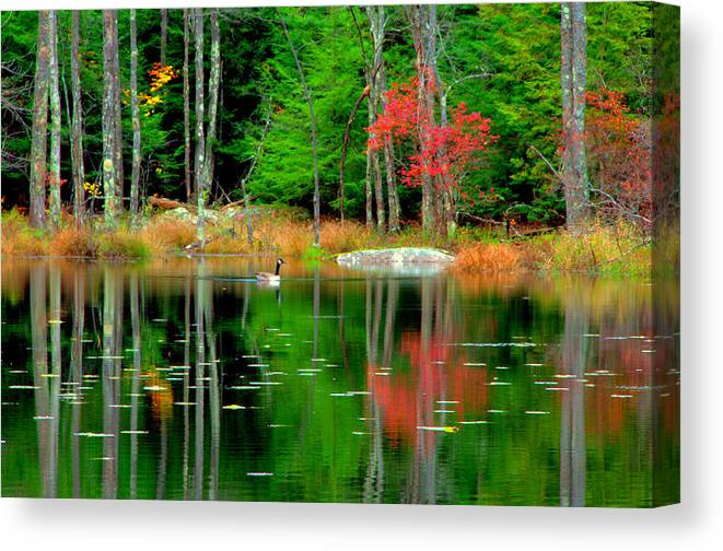 Lake View Canvas Print featuring the digital art Autumn Reflections by Aron Chervin