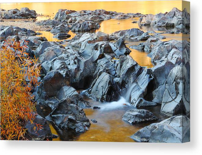 Black River Canvas Print featuring the photograph Black River Reflections At Johnsons Shut Ins State Park Vi by Greg Matchick