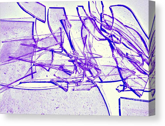 Abstract Canvas Print featuring the photograph Broken Glass Purple by Susan Stevenson
