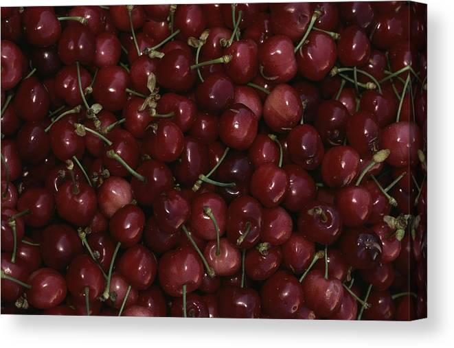 Plants Canvas Print featuring the photograph Cherries by Nicole Duplaix