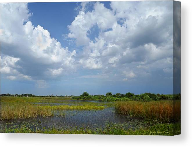 Clouds Canvas Print featuring the photograph Clouds Gather by Grace Dillon