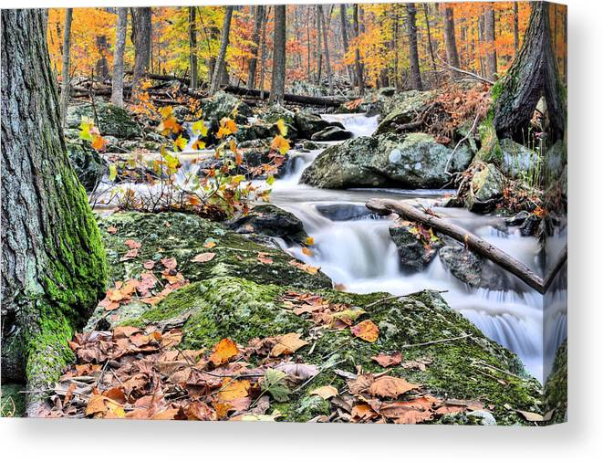 Falling Water Canvas Print featuring the photograph Falling Water by JC Findley