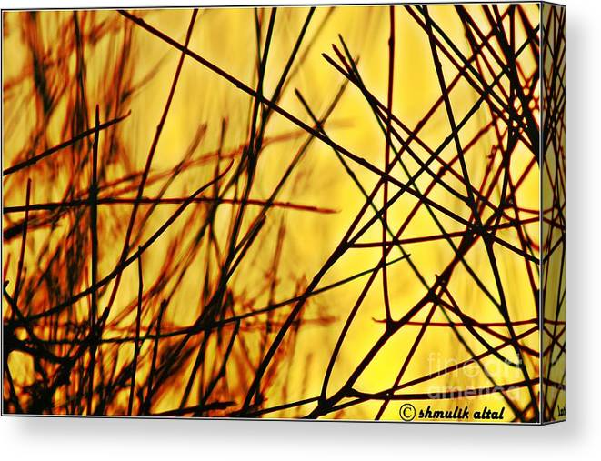 Nature Canvas Print featuring the photograph Flames Nature by Shmulik Altal