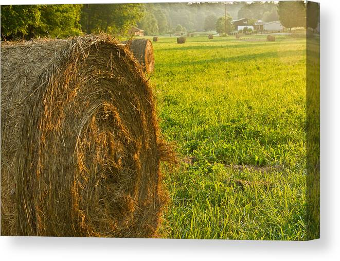 Hay Canvas Print featuring the photograph Golden Hay Field by Douglas Barnett