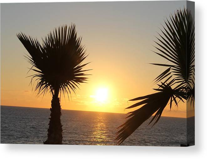 Landscape Canvas Print featuring the photograph Ocean Light by Guillermo Mason