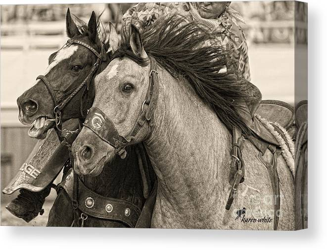 Equine Canvas Print featuring the photograph Rafter G Bronc by Karen White